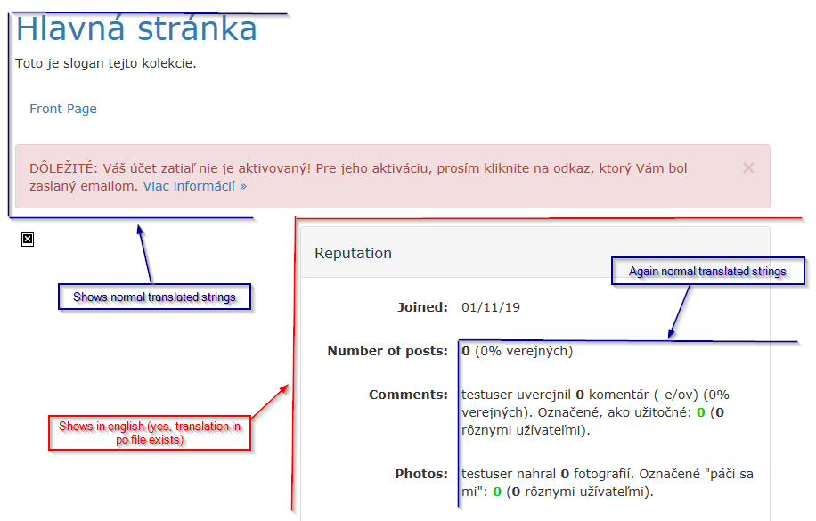 b2evolution 7.0.1-beta - possible bug in shown localized strings on user profile page